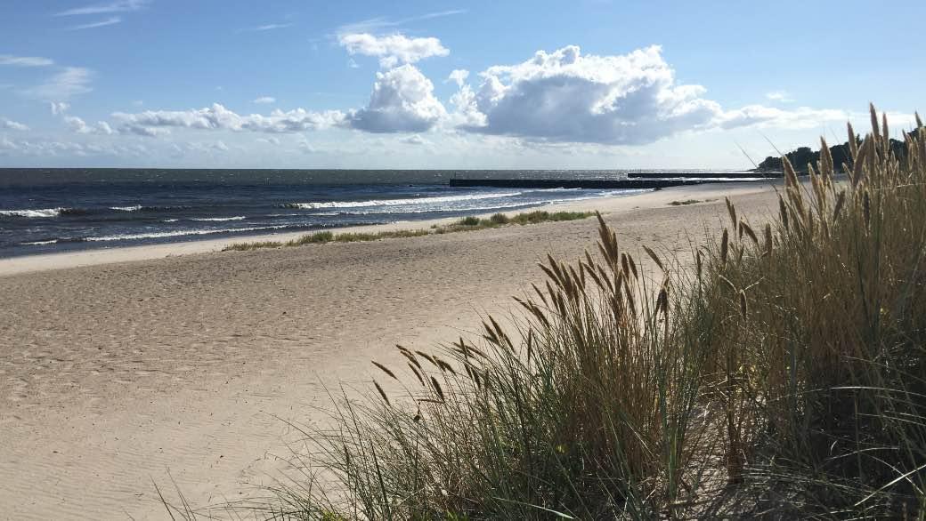 Stranden vid Ystad Sandskog.